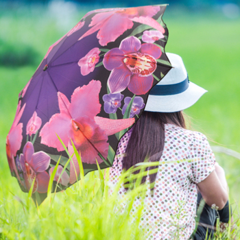 Flower Art Umbrellas