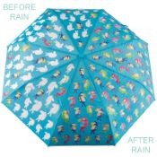 Colour Changing 'Big Kids' Folding Umbrella - Toucan