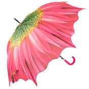 Full Canopy Flower Walking Length Umbrella - Gerbera