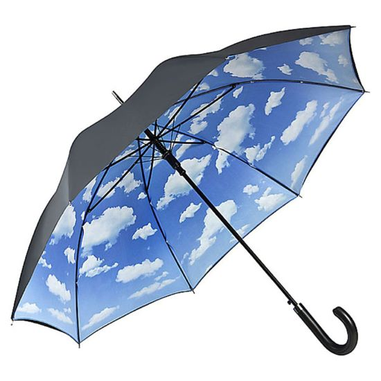 Double Canopy Walking Length Umbrella - Summer Clouds
