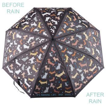 Colour Changing 'Big Kids' Folding Umbrella - Cats & Dogs