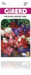 Pois vivace à bouquets sachet  3 g