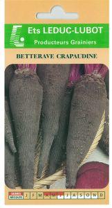 Betterave crapaudine sachet  4 g