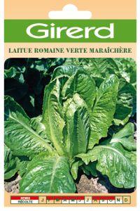 Laitue romaine verte maraîchère sachet géant 8 g