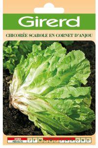 Chicorée scarole cornet d Anjou sachet géant 10 g