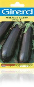 Aubergine Baluroi HF1 sachet 0,5 g