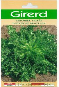 Chicorée frisée hiver de Provence sachet  5 g