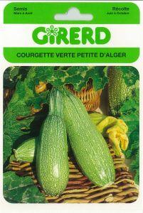 Courgette verte d' Alger sachet géant 8 g
