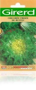 Chicorée frisée de Ruffec sachet  5 g