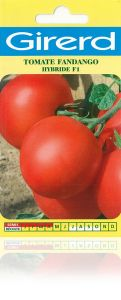 Tomate Fandango HF1 sachet 0,2 g