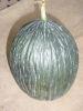 MELON vert olive d'hiver Pqt 500 g