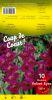 GLAIEUL Velvet Eyes violet coeur rouge Pochette de 10 bulbes - code B