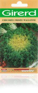 Chicorée frisée Wallonne sachet  5 g
