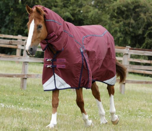 Combo Cellular Zone 250g Turnout Rug