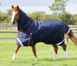 Titan 100g Turnout Rug with Neck Cover